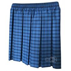 Skirt, Blue Check