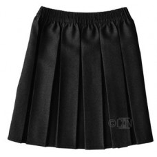 All Round Pleat Skirt